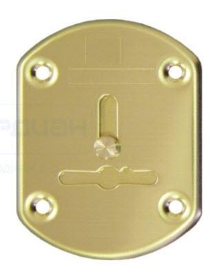 Накладка АЛ 21 сув. (размер накладки 62*48), Цвет золото