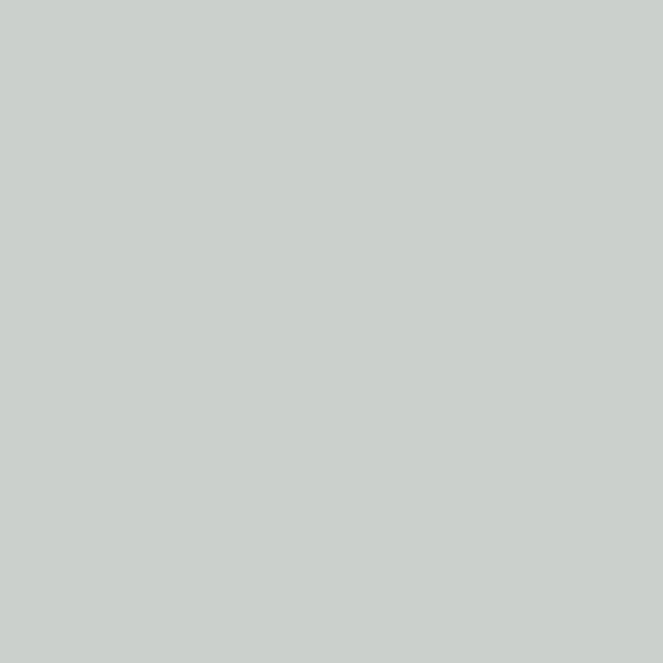 7035 Порошковая краска П-ПЛ-1010 RAL 7035 (гладкая)/20кг