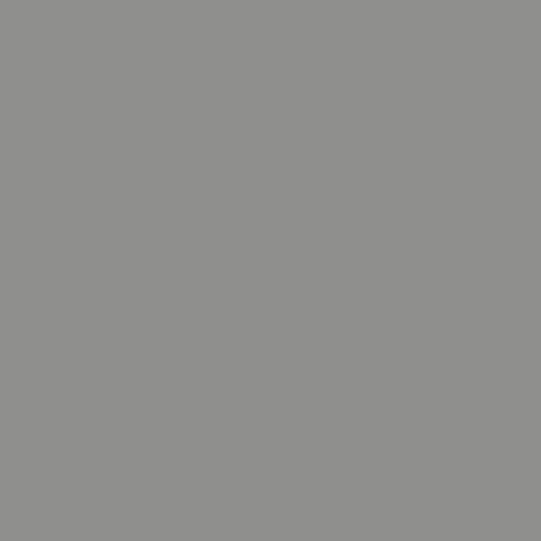 9007 Порошковая краска П-ПЛ-1010 RAL 9007 (гладкая)/20кг