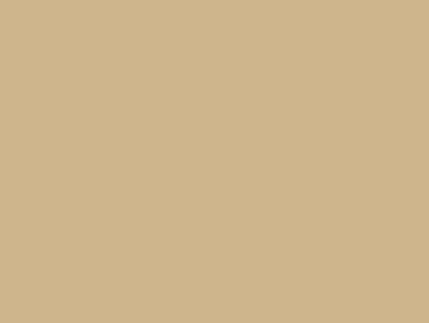 1001 Порошковая краска П-ПЛ-1016 RAL 1001 (шагрень)/20кг