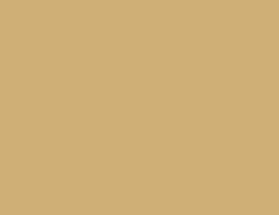 1002 Порошковая краска RAL1002 (песочно-желтый) гладкая глянцевая PE MICROPUL 25кг