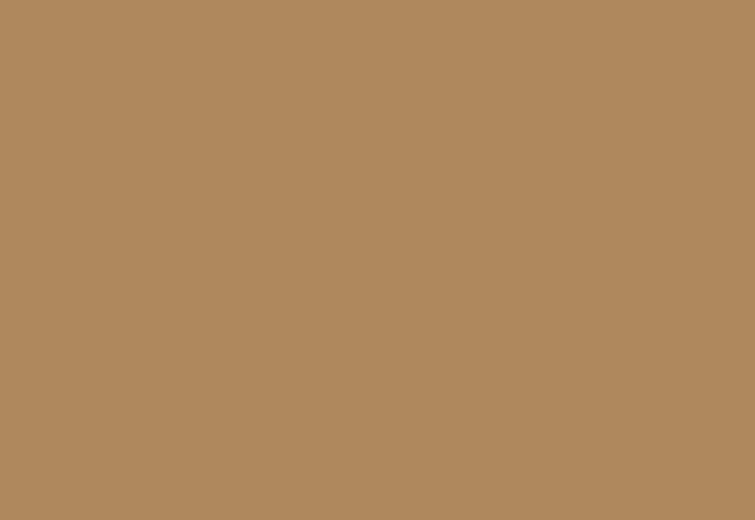 1011 Порошковая краска П-ЭП-ПЛ-2067 RAL 1011 (шагрень)/20кг